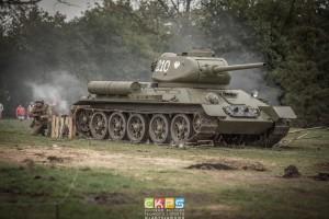 bitwaowielkawies-24-of-1-300x200